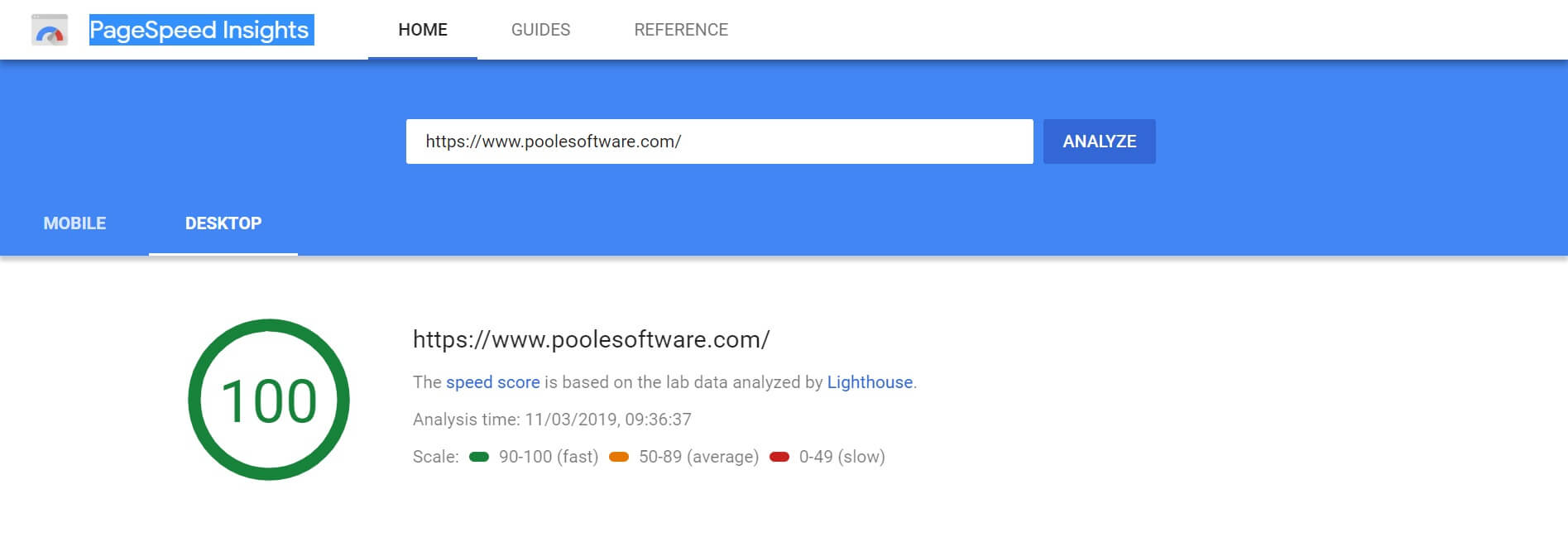 100% in the Google PageSpeed Insights Image